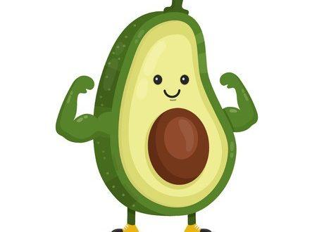 Benefícios do abacate ao organismo