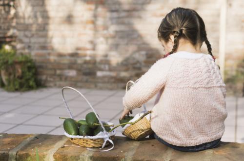 Abacate e o gostinho de infância