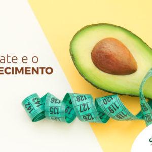 Nutritivo, o abacate pode ajudar na dieta de emagrecimento